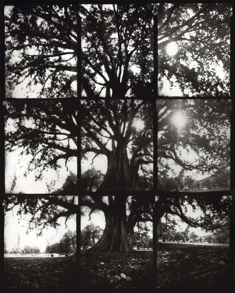 a composite image made from 9 pinhole photographs by Alex Bishop-Thorpe
