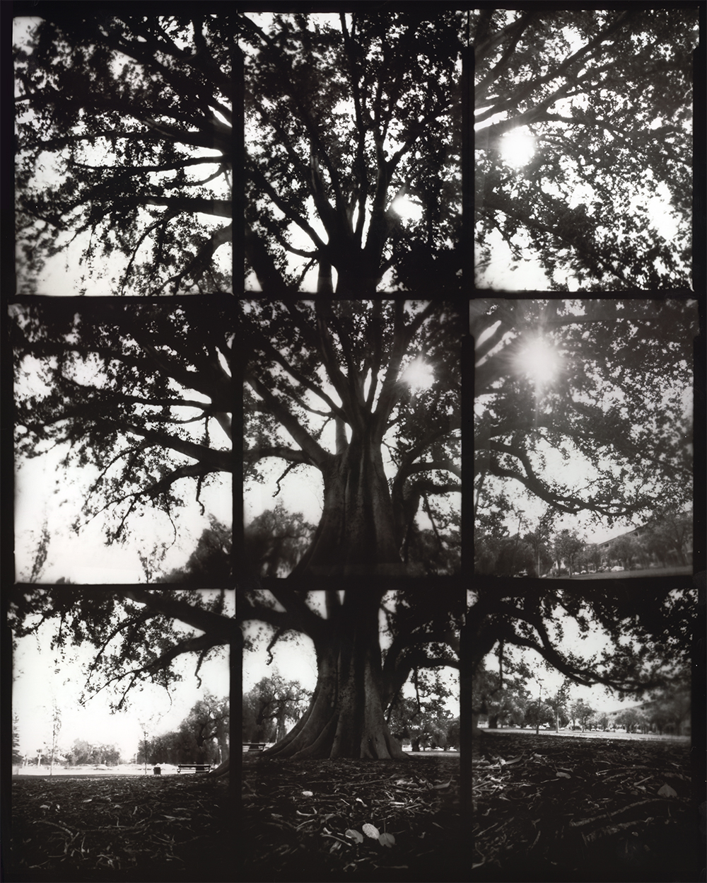 A Composite Image Made From 9 Pinhole Photographs By Alex Bishop Thorpe