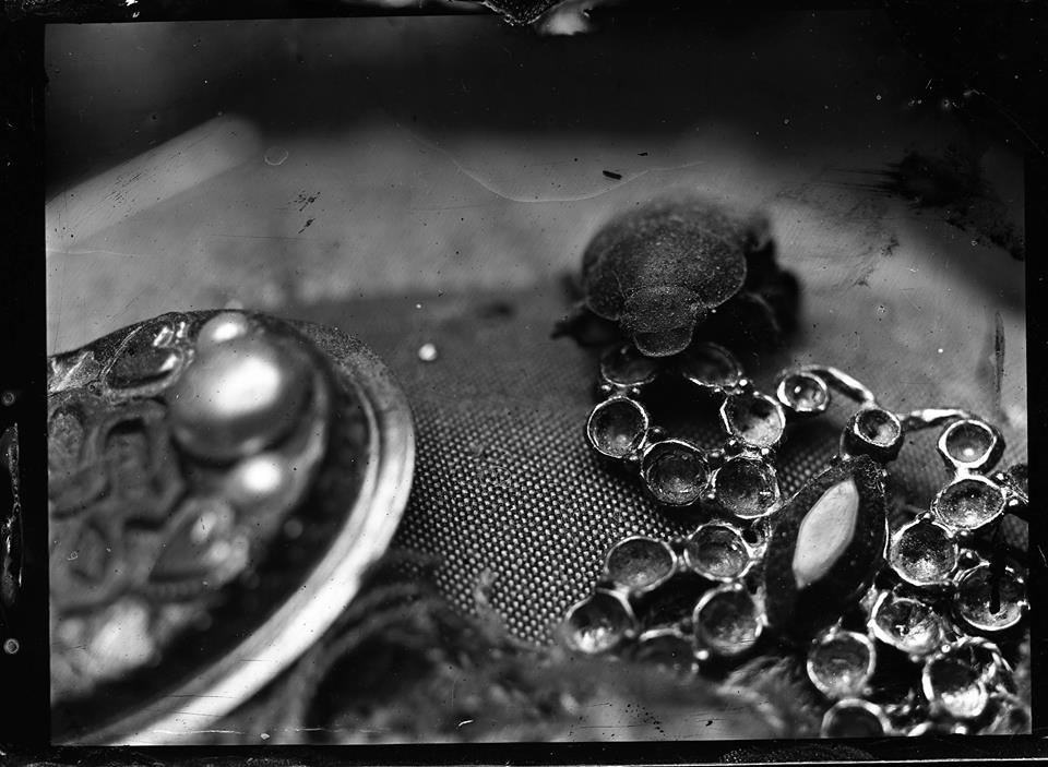 Ambrotype on clear glass by Andrew Dearman