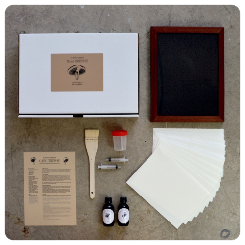 Our Deluxe Cyanotype Kit, shown here with the A4/8x10 contact printing frame.