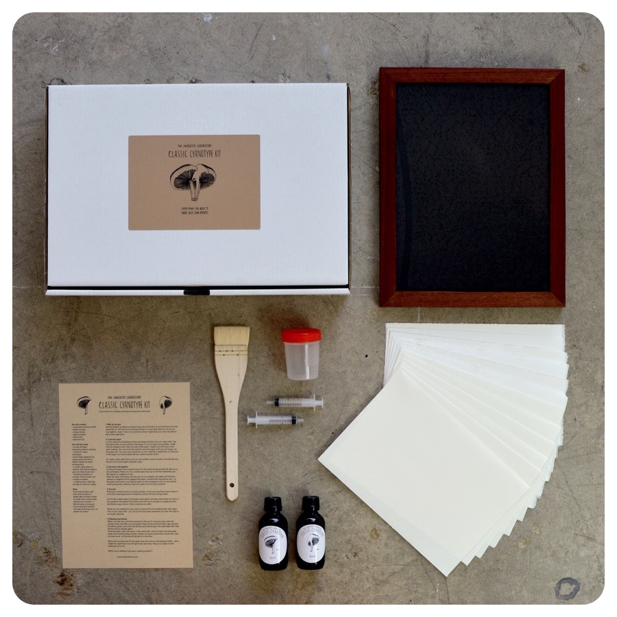 Deluxe Cyanotype Kit with Contact Printing Frame – The Analogue ...