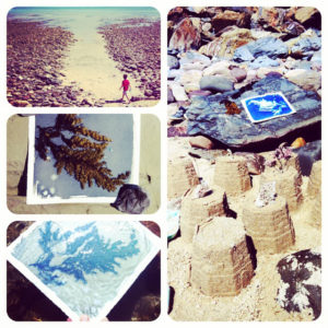 Exposing and developing cyanotypes at the beach! Take some pre-coated paper with you in a light-proof bag. Spend a while raiding rock pools for interesting shells and seaweeds, let them dry off a little and then arrange them on a piece of cyanotype paper. Use your shadow to prevent too much light reaching the paper while you arrange your objects. Wash in the seawater and pop on a rock to dry. Too easy.