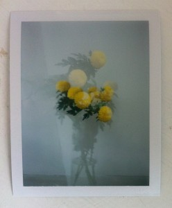 Stunning double exposure created by Rebekah Rivett during a Creative Polaroids workshop