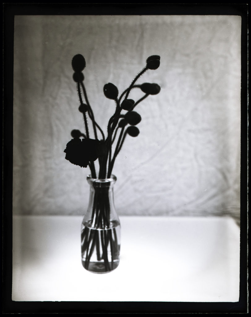 An example of a plate shot with a modified film pack adapter.
