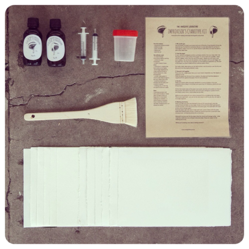The Improvisers Cyanotype Kit - almost everything you need to cyanotype at home